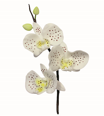 PME 3pk MOTH ORCHID FLOWER PETAL Cut Out Stainless Steel Icing Cutters Sugarcraf