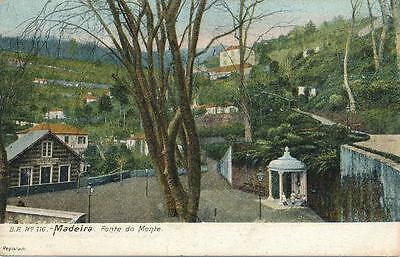 AK Portugal Madeira, Fonte do Monte, 1908, (G)