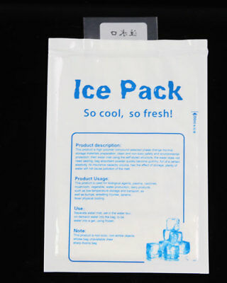10 X Reusable Gel Ice Pack /Cooler Bag For Food Storage Picnic Retain Freshness