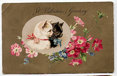 1906 postcard ST. VALENTINE'S GREETINGS Black/White Cats w/ Forget-Me-Nots/Gilt