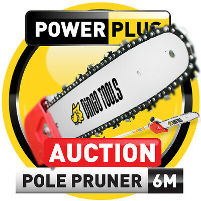 NEW 2012 POLE SAW CHAINSAW BRUSH CUTTER HEDGE TRIMMER CHAIN SAW