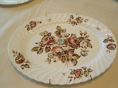 JOHNSON BROS MADE IN ENGLAND DEVON SPRAYS OVAL PLATE WITH HANGER