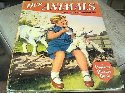 OUR ANIMALS Book - 1950s