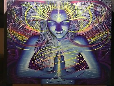 PSYCHEDELIC VISIONARY ART CANVAS GICLÉE! Like Alex Grey FREE POSTERS & STICKERS
