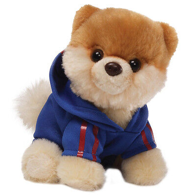 NEW OFFICIAL GUND Boo The World's Cutest Dog Jogging Suit Itty Boo Plush 4034211