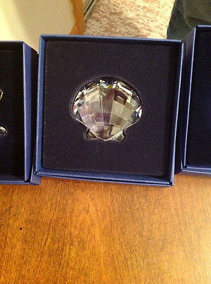 SWAROVSKI SCS WONDERS OF THE SEA SCALLOP PAPERWEIGHT