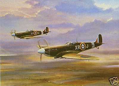 SPITFIRES ---AIRCRAFT FINE ART PRINT BY BARRY PRICE