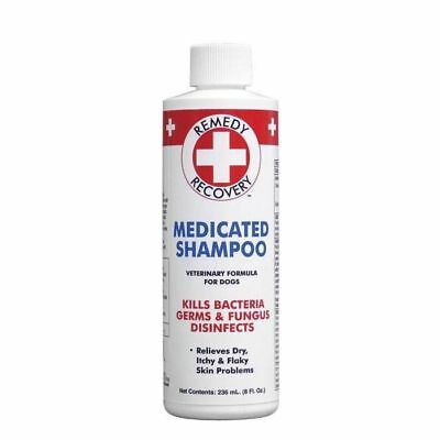 Cardinal Laboratories Remedy and Recovery Medicated Therapeutic Dog Shampoo 8oz