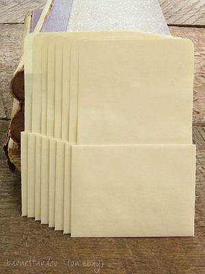 100 Plain Library Pockets - No Adhesive, Manila Card Pockets