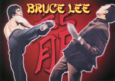 Bruce Lee & Kick•Martial Arts Celebrity•Movies, Film Personality POSTCARD