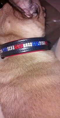 Hand Crafted Leather Dog Collar Crystal Exquisite Quality small to large