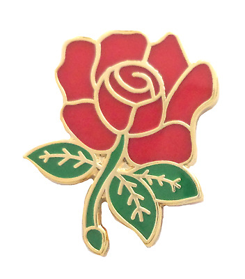 Labour Party Red Rose Pin Badge - T750