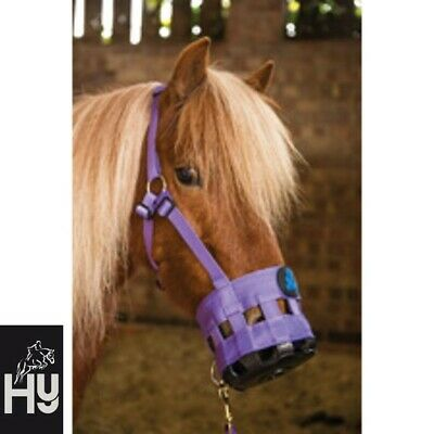 Hy Grazing Muzzle **5 SIZES** **BLACK or PURPLE** Prevent Laminitis **FREE P&P**