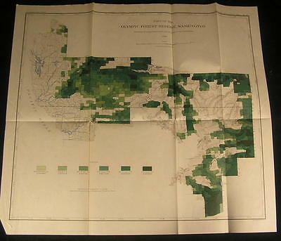 Olympic Forest reserve Washington state ca. 1899 detailed color Timber map