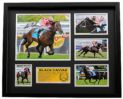 New Black Caviar Luke Nolen Signed Limited Edition Memorabilia