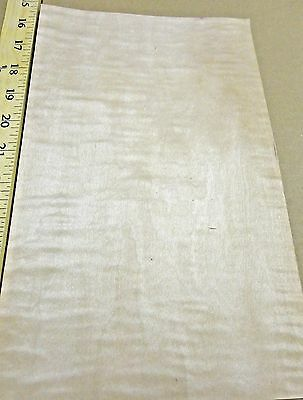 """Curly Figured Tiger Maple wood veneer 7"""" x 11"""" raw no backing 1/42"""" thickness"""