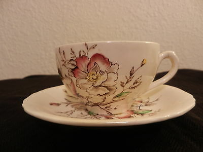 """Alfred Meakin """"Wild Rose"""" Cup & Saucer Set -  Made in England - HTF - *EUC*"""