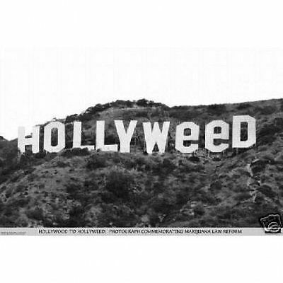 HOLLYWEED SIGN POSTER - 24x36 WEED POT MARIJUANA HOLLYWOOD 3065