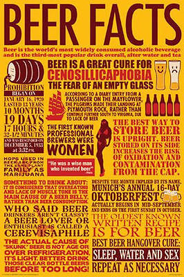 BEER FACTS POSTER - 24x36 SHRINK WRAPPED - FUNNY CHART LIST COLLEGE 241215