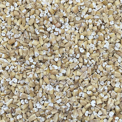 15Kg Pinhead Oatmeal for Wild Bird Food and suitable for Particle Fishing Mix