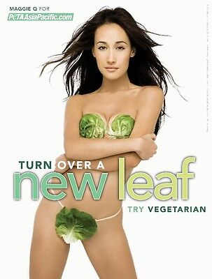 Maggie Q Poster #4 (24 x 17)