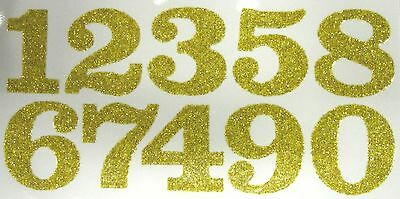 "1.25"" Iron-On Glitter Numbers"