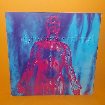 "Tupelo Sub Pop Nirvana - Sliver Dive About A Girl (Live) 12"" Single Vinyl Record"