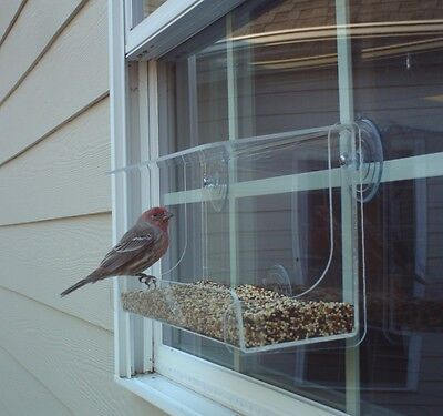 "Window Bird Feeder JCs Wildlife Lg Classic 13"" Acrylic holds 4 cup Free Shipping"
