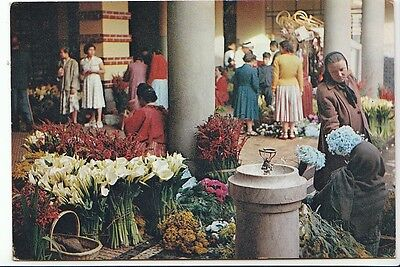 Portugal Postcard - Madeira - The Flower Corner of The Market - Funchal   BH3228