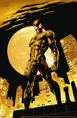 Amazing Spider-Man #528 Mike Deodato Jr. & Marvel Comics - Ltd Ed Canvas