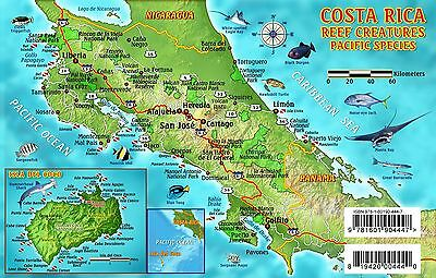 Costa Rica Dive Map & Pacific Reef Creatures Laminated Fish Card by Franko Maps