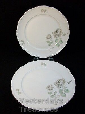"""A Fabulous Pair of 10"""" Dinner Plates by Mitterteich Bavaria Pattern: Mystic Rose"""