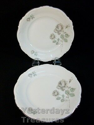 """A Pair of 8"""" Salad Plates by Mitterteich Bavaria Pattern: Mystic Rose"""