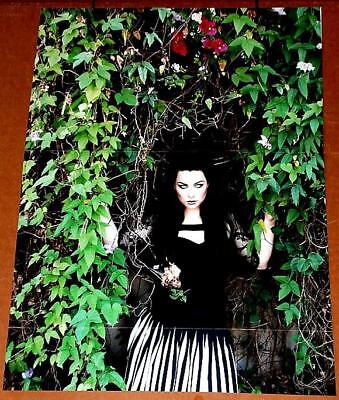 Evanescence Amy Lee Pretty In Green Poster Rare Import