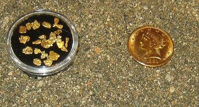 1/4 LB. AMERICAN RIVER GOLD PAYDIRT CONCENTRATES FROM AMERICAN GOLD PAYDIRTS