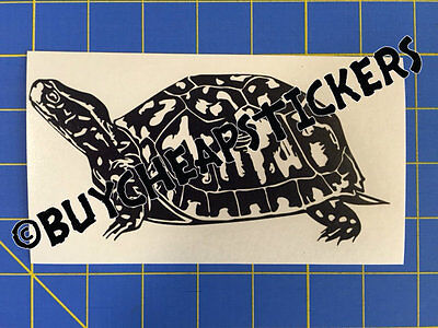 Box Turtle Tortoise Vinyl Decal - Sticker 3x6 - Any Color