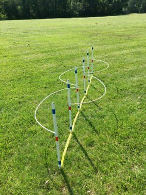 Dog Agility Equipment Weave Poles with Guide Wires ⭐⭐⭐⭐⭐