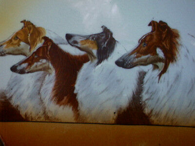 """Very Hard to Find  Vintage Collie Plate Made by Caledon"""" Four by Honours""""  10"""""""