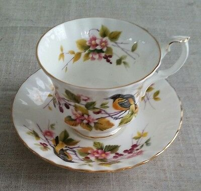 "ROYAL ALBERT TEACUP & SAUCER-WOODLAND BIRDS ""BALTIMORE ORIOLE""-1970s Bone China"