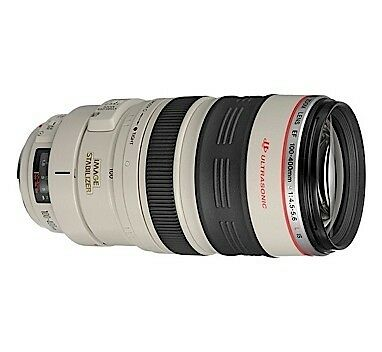 Canon EF 100-400 mm F/4.5-5.6 L IS USM Lens