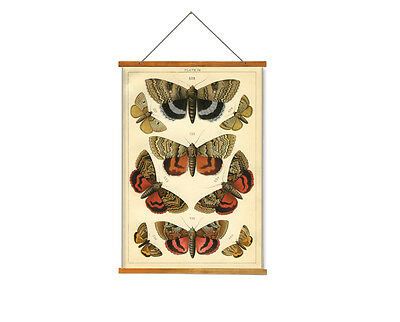 Butterfly Wall Hangings Tapesty - Vintage Art Print Poster