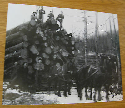 VINTAGE PHOTOGRAPH PRINT OF HORSE DRAWN MINNESOTA LOGGING LOGGERS AXE SAW MEN