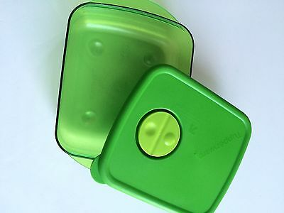 Tupperware Rock N Serve Rectangular Bowl Green 2 1/2 Cup Microwave Container
