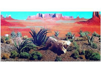 "Aquarium / Vivarium Reptile Desert Background 19"" Tall Poster Fish Viv Tank x"