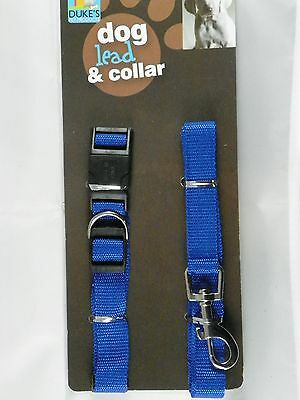 Dog Lead and Collar blue dog cat pet animal control leash clasp spring