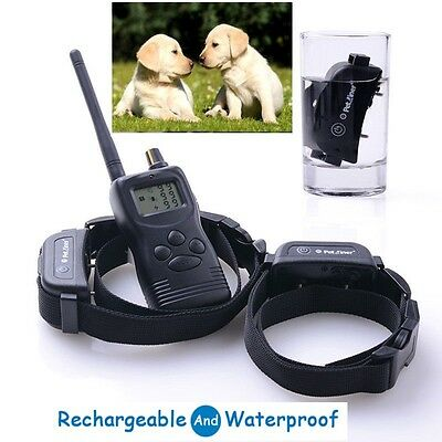 1000M Waterproof Rechargeable Remote Shock Pet Dog Training Collar 2 dog Trainer