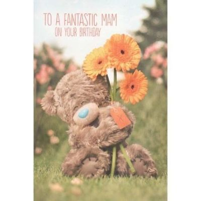 Me To You To A Fantastic Mam On Your Birthday Card Tatty Teddy Bear New Gift