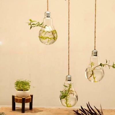 Hanging Glass Flowers Planter Vase Terrarium Container Home Garden Decors Bulb