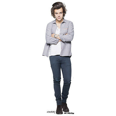 HARRY STYLES One Direction 1D Lifesize CARDBOARD CUTOUT Standee Standup Poster