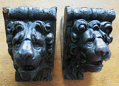 Pair of Flemish ANTIQUE 16th CENTURY Lions Head OAK CORBELS Carved Folk Art LOOK